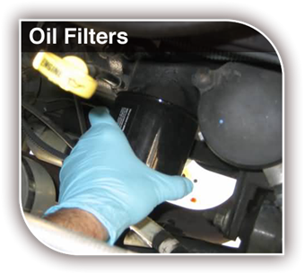 Picture of Oil Filters